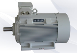 Standard Ac Induction Motor